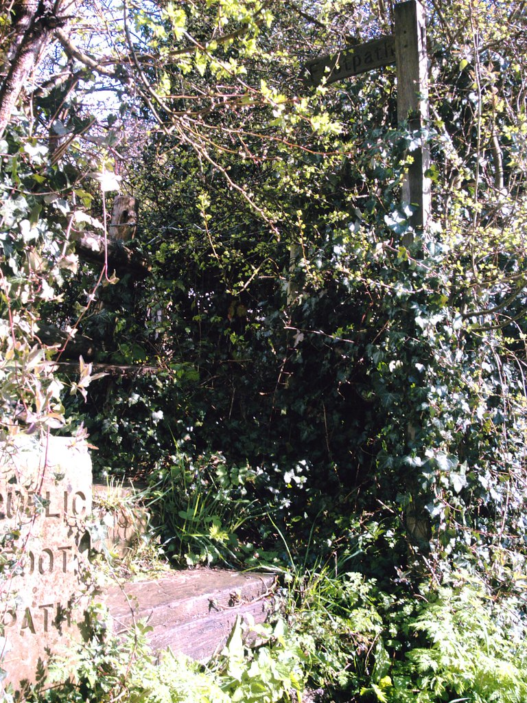 "Book 1 Walk 15 Leigh to Tunbridge Wells ""Concrete and wooden footpath signs"". dga Vivitar 5199 5mp"