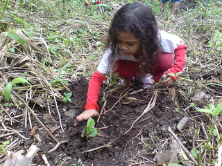 rhyan planting her first tree in lake holon philippines | by maulvi