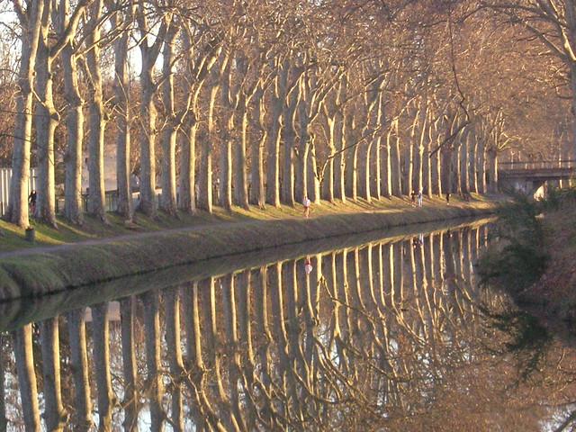 Canal automnal, Canal du Midi, France