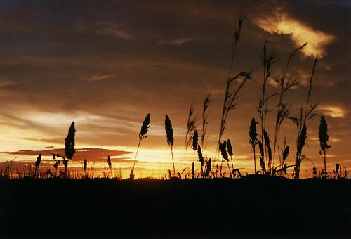 Zimbabwe Sunset | by 2E0MCA