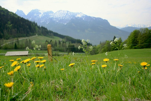 styrian view