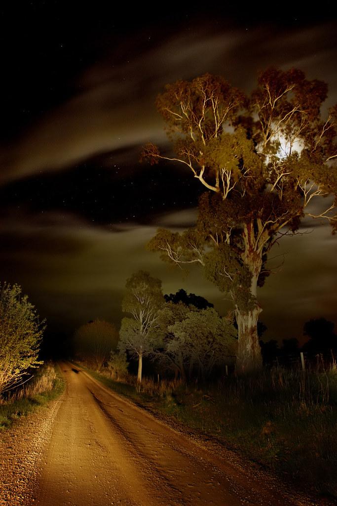 220507 headlight moonlight starlight