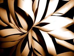 paper snowflake redux
