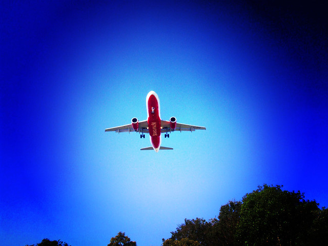 Kingfisher Plane