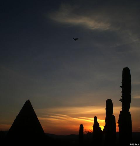 sunset cactus sky bird silhouette geotagged mexico interestingness interesting silo explore zacatecas guadalupe soe explored i500 shieldofexcellencegroup ltytr1 diamondclassphotographer