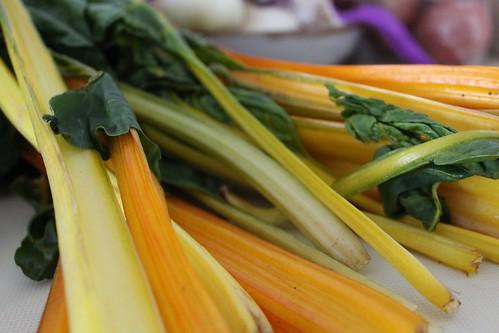 colorful stems | by Boka Dulse