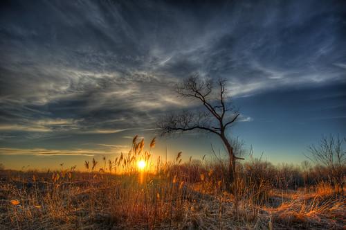 sunset hdr richmondhill uwa epicsky photomatix flickraward torontogta nikond700 nikonflickraward nikon1424f28g mygearandme ringexcellence thisishowcanadiansspellcolour