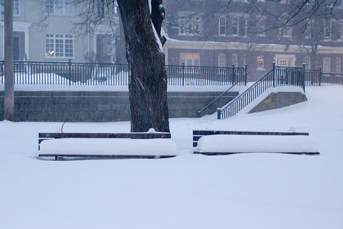 Two snowy benches | by dalmond