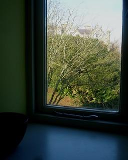 Window | by En Bouton