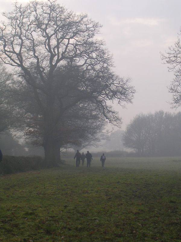 walkers in the mist Dorking to Reigate