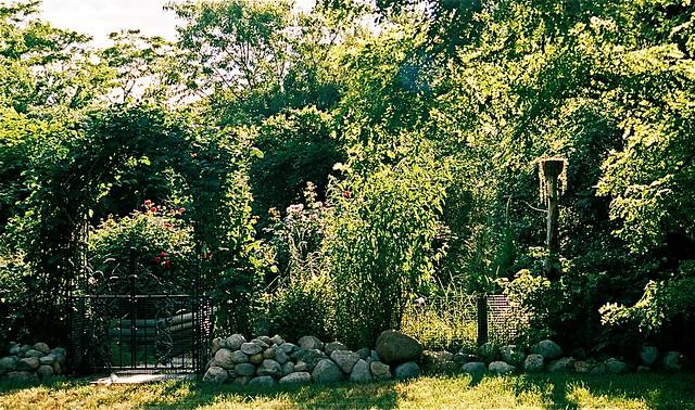 Cutting Garden, Autumn