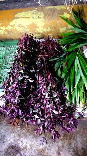 imbi market herbs   by chotda