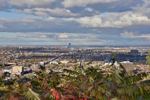 montreal montréal quebec québec canada mont royal olympic stadium
