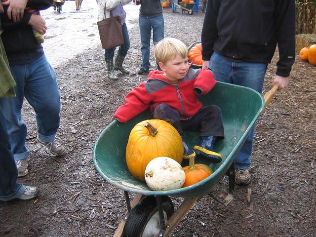 Oskar gets a Wheelbarrow Ride