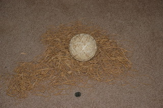 Giant Rubber Band Ball Under Construction | by asymptote_inverse