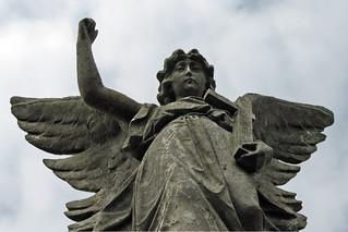 angel   by Leo Reynolds