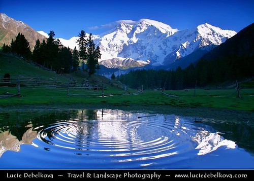 Pakistan - Fairy Meadows - Circles of Life - | by © Lucie Debelkova / www.luciedebelkova.com