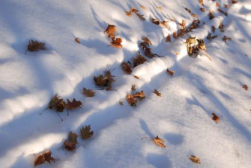 winter walk.8   by SouleMama