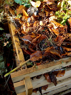 Still life on composter | by allispossible.org.uk