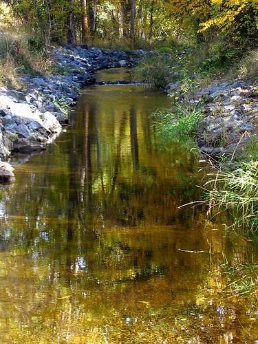 reflection water creek landscape stream unature diamondclassphotographer flickrdiamond