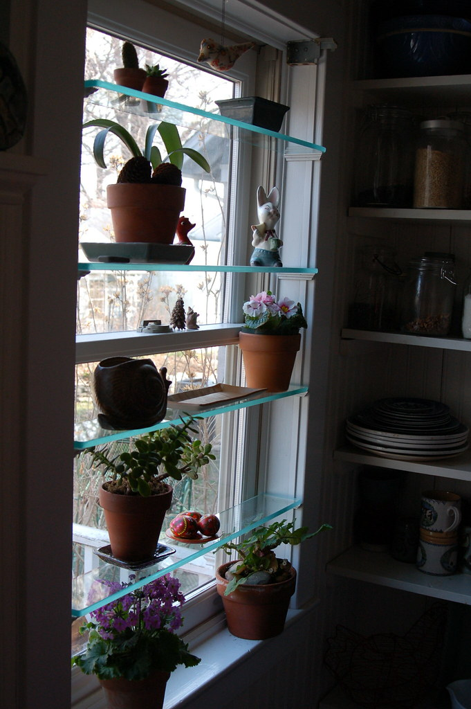 new greenhouse window | got the idea from good old martha