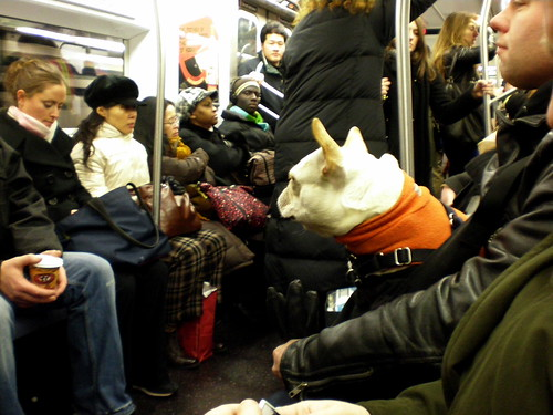 just another subway passenger