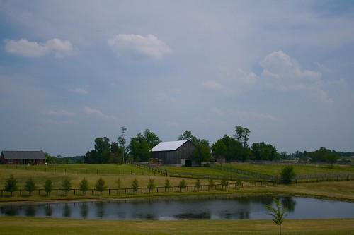 barn pond farm