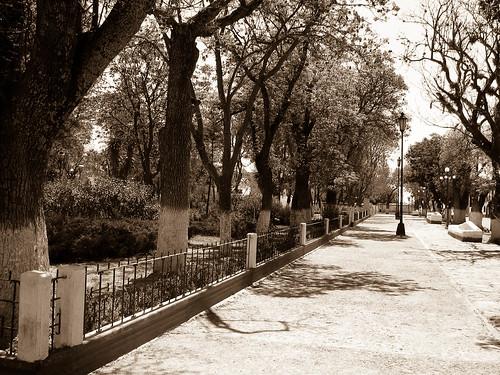 Zócalo de Tecali de Herrera - Puebla