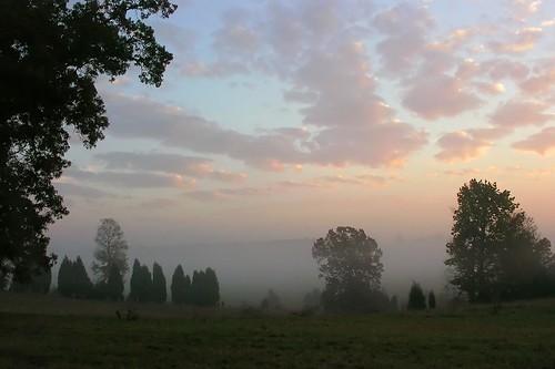 morning wallpaper mist sunrise northcarolina