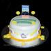 Destination Organization cake