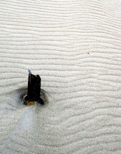 wind patterns on dune