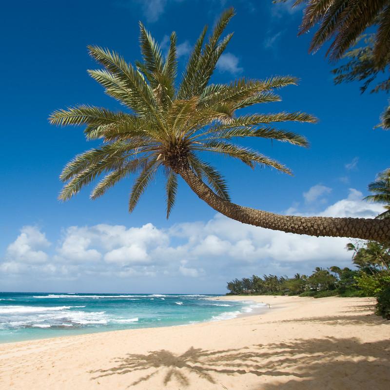 Sunset beach, oahu Hawaii