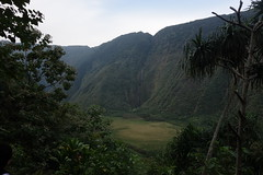 Waimanu valley from the Muliwai trail