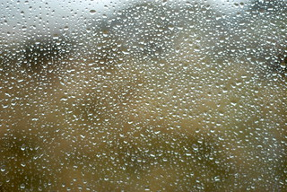 Rain on the window | by Forest Pines
