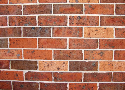 "Talking To A Brick Wall | by Joriel ""Joz"" Jimenez"