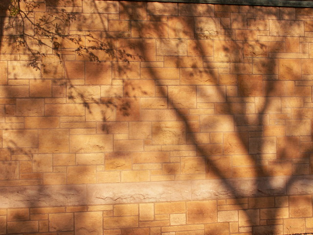 wall shadows 2
