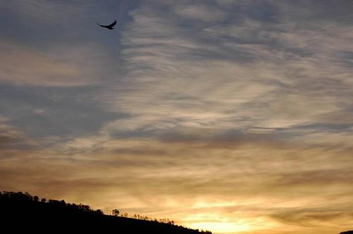 valldecamprodon sunrise sortidadesol pyrénées pyrenees pirineu pirineo clouds núvols nubes nature naturaleza natura llanars girona cataluña catalunya catalonia catalogne amanecer cat