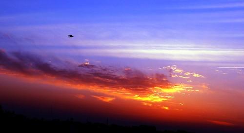 sunset india punjab ludhiana lumixfz50