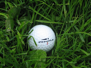 Golf Ball in Rough | by One Tree Hill Studios