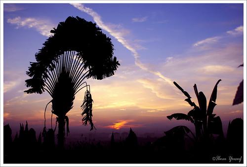 cloud sun sunrise malaysia a200 selangor shahalam travelerspalm flickrsbest sonydslr avision anawesomeshot ibnuyusuf theperfectphotographer goldstaraward kelabshahalam jetstrails