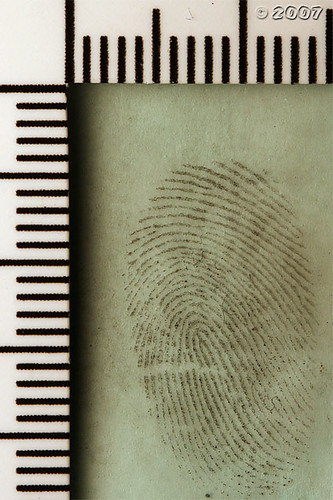 Cool Mint Fingerprint | by Jack Spades