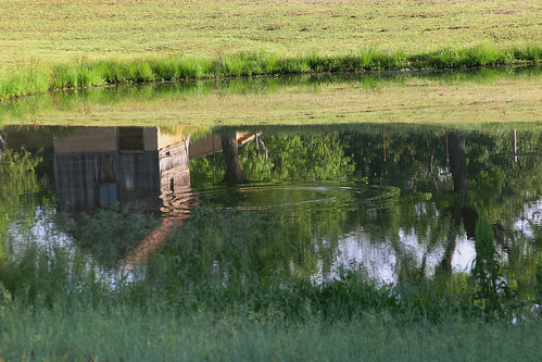 reflection green barn spring pond arkansas ripples nebo