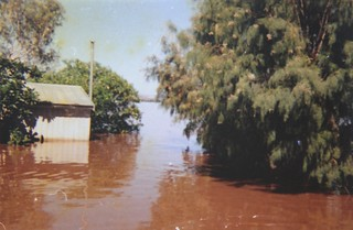 1971-72 - Operation Ord Noah - Argyle Downs 11 - Flooded Scenes - KHS-2013-31-b-P-BD-28