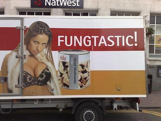 FUNGTASTIC!