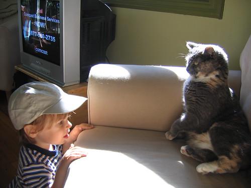 Boy v Cat