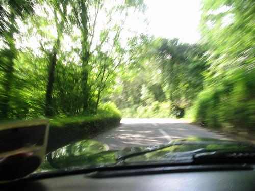 A Green Lane!