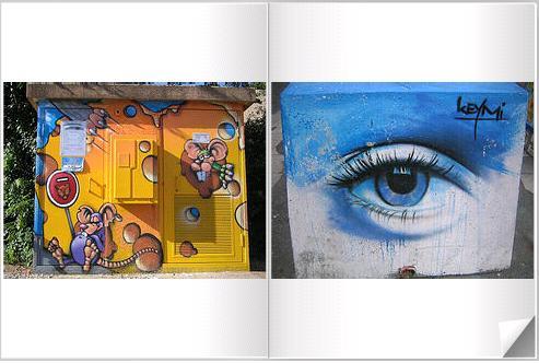 livre coincoyote graffity
