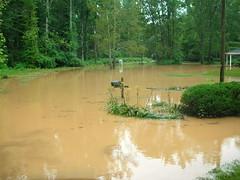 Fairfield Flood