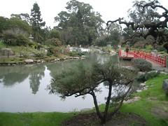 Jardin Japonese - 04 - Lake