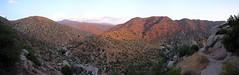 Trail to Deep Creek Near Sunset